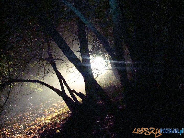 zajęcia nocne Awangardy w 2008 roku  Foto: