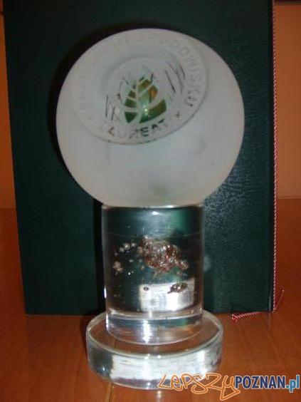 Statuetka -  Nagroda Laureata.1  Foto: COPYRIGHT, 2006