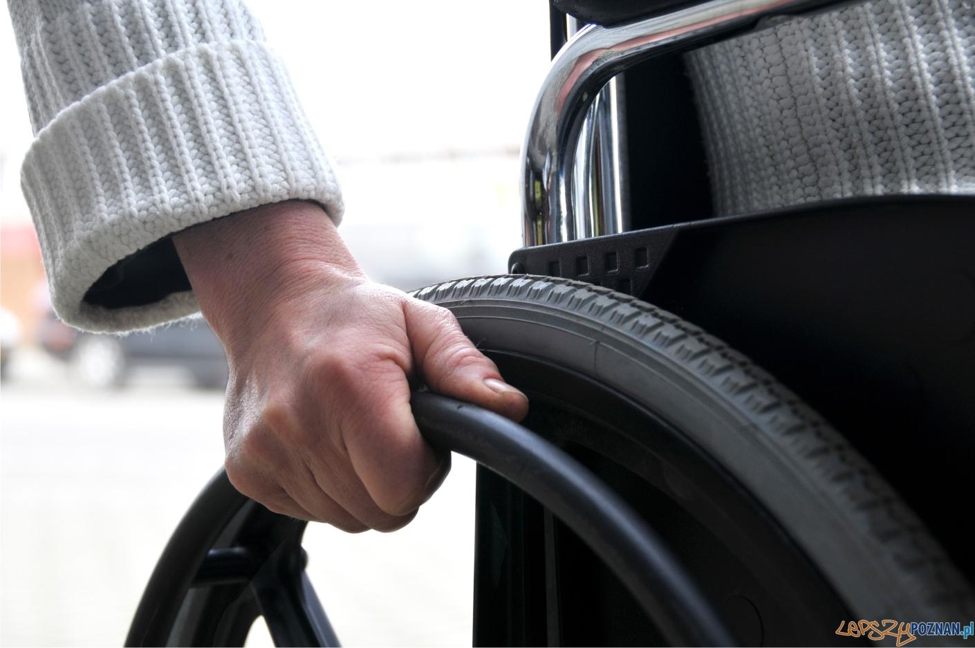 na wózku  Foto: sxc