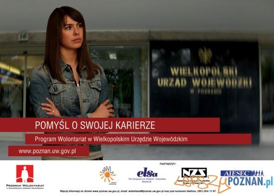 wolontariat w Urzędzie Wojewódzkim  Foto: Urząd Wojewódzki