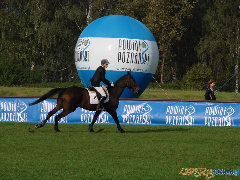 Mistrzostwa w Ujeżdżeniu i WKKW - sobota  Foto: lepszyPOZNAN.pl / ag