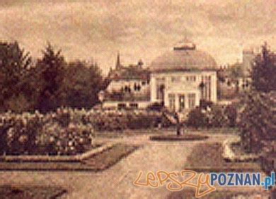 Palmiarnia w Poznaniu  Foto: Palmiarnia w Poznaniu - archiwum
