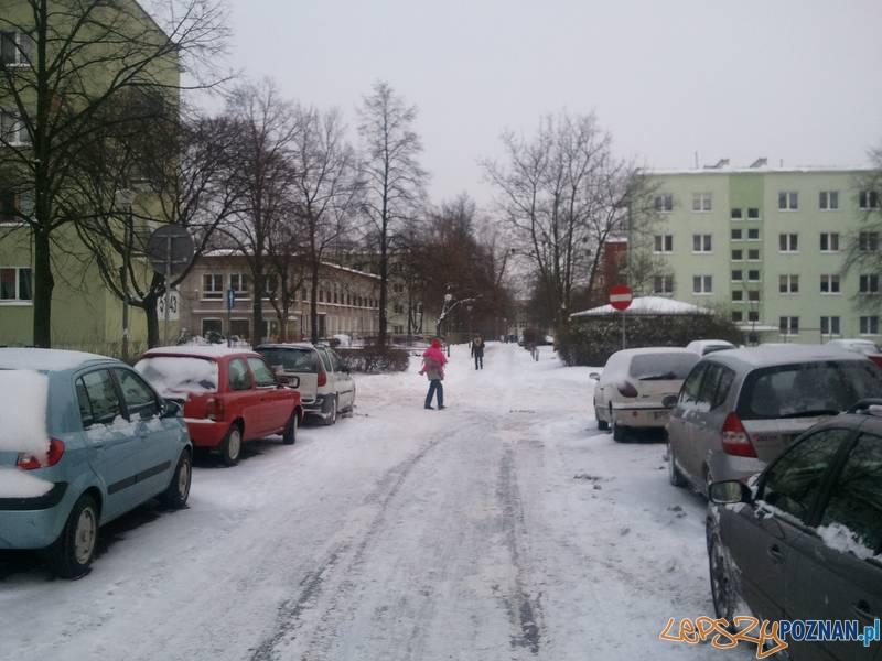 Dębiec  Foto: lepszyPOZNAN.pl  / gsm