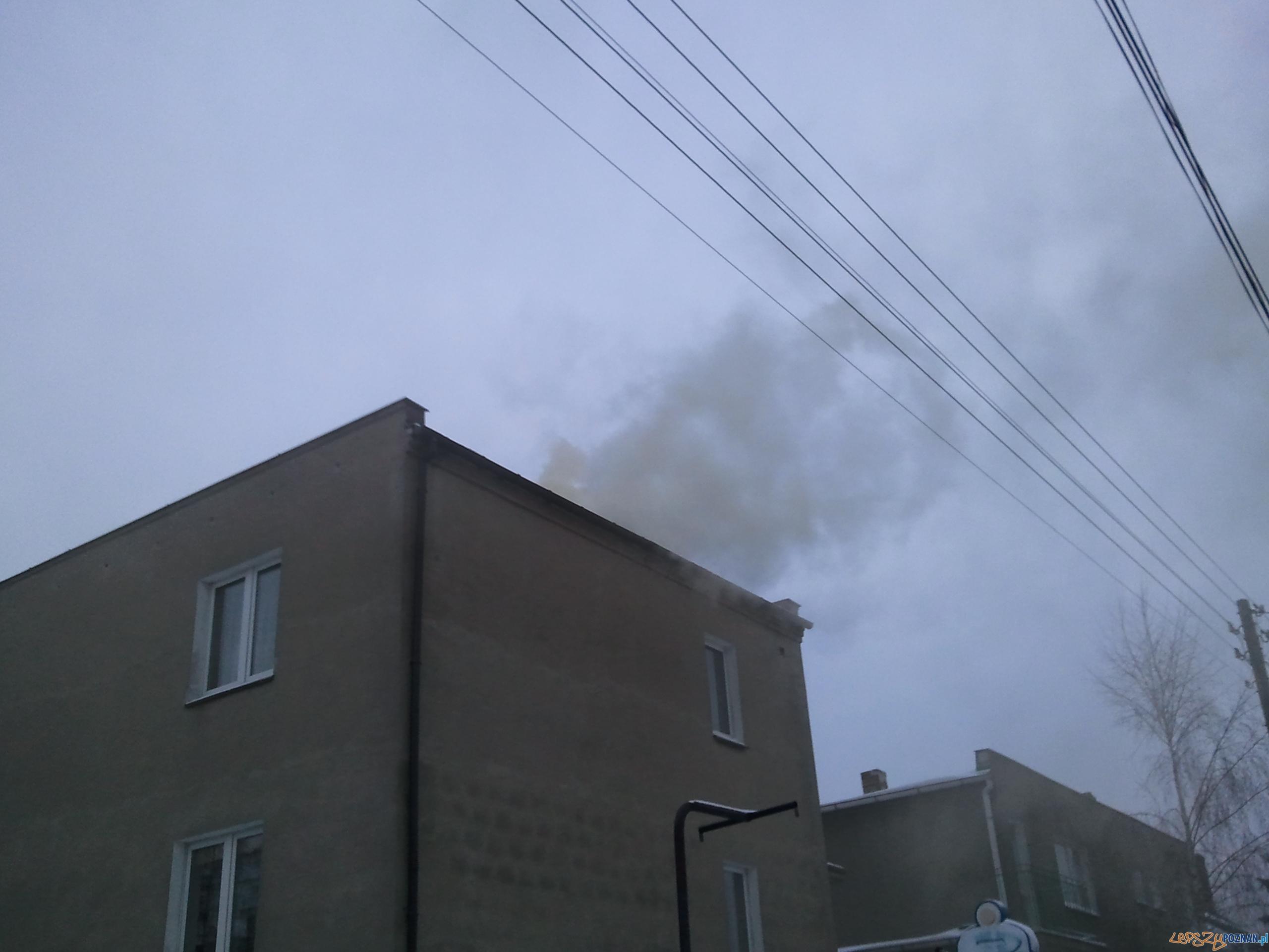 ostrożnie z tym paleniem  Foto: lepszyPOZNAN.pl / gsm
