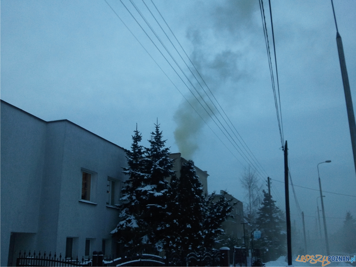 Uciążliwy dym z komina  Foto: lepszyPOZNAN.pl / ag