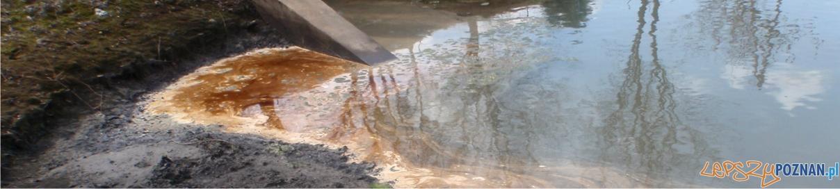 panorama zanieczyszczenie  Foto: Straż Miejska