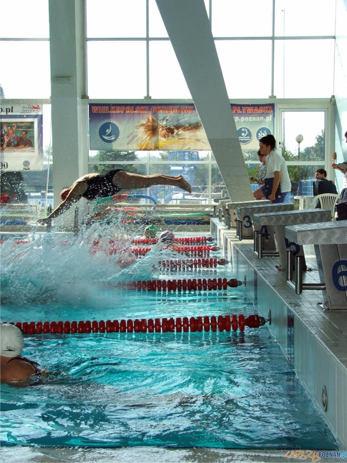 Spartakiada Seniorów - pływanie  Foto: POSiR