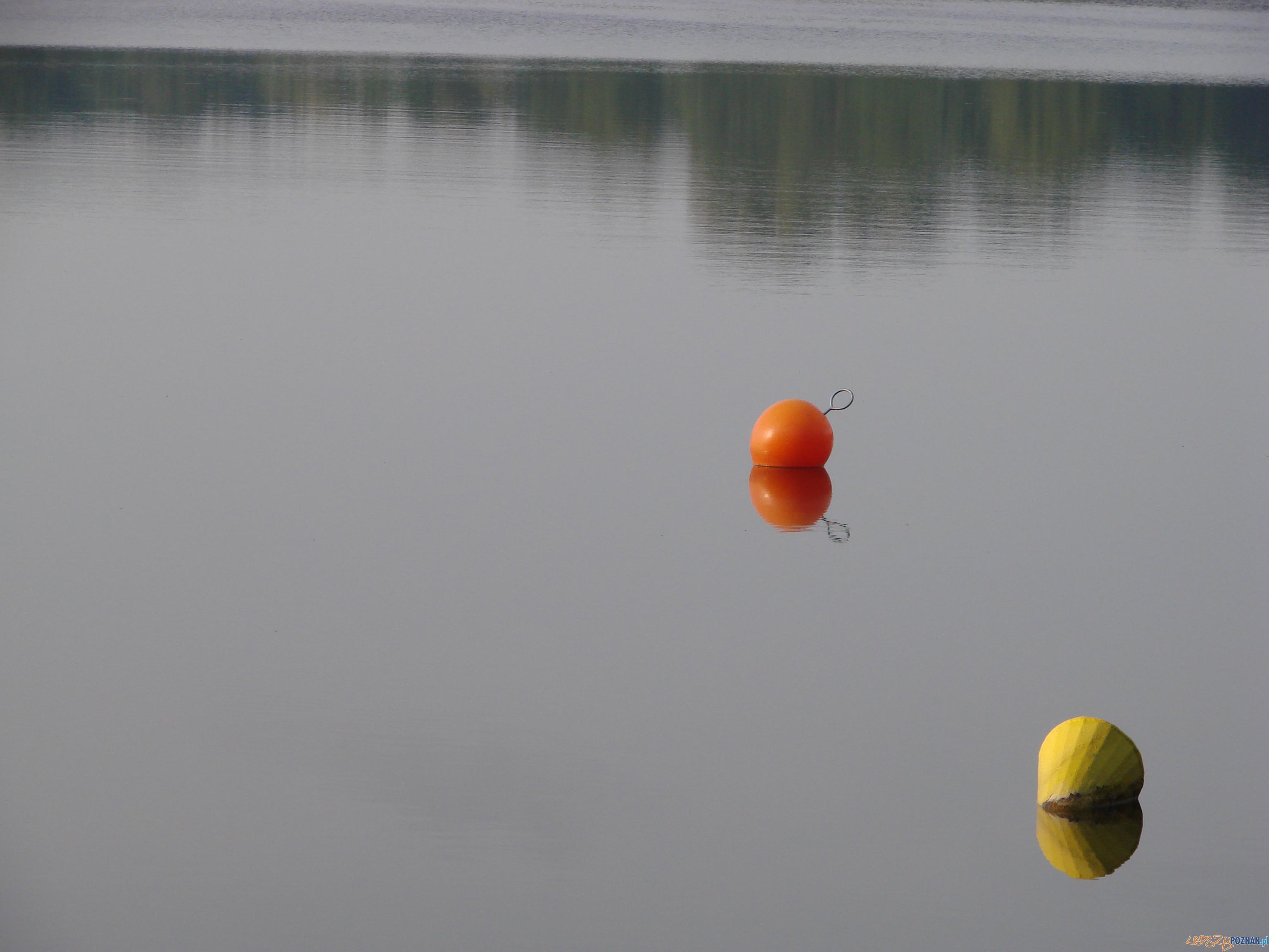 jezioro  Foto: lepszyPOZNAN.pl / ag