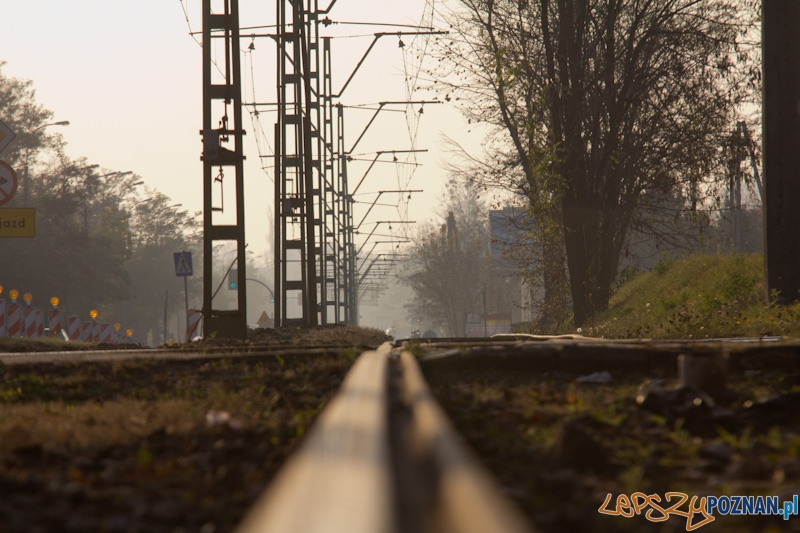 Linia tramwajowa na Junikowo  Foto: lepszyPOZNAN.pl / Piotr Rychter