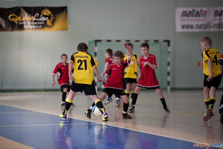 Piłkarski Koziołek (1)  Foto: