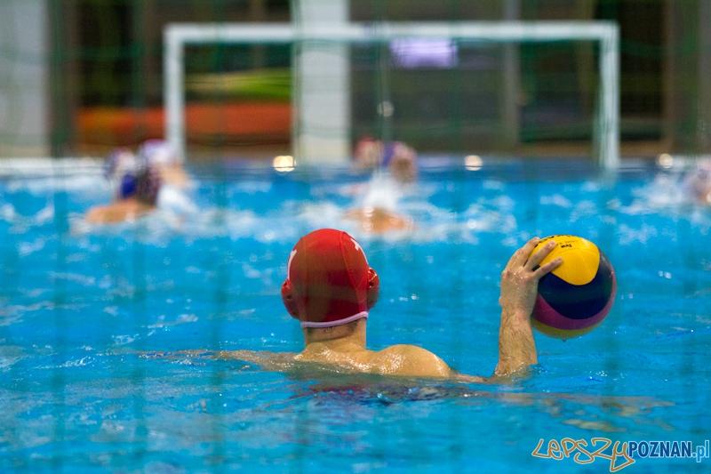 KS Waterpolo Poznań - Arkonia Szczecin - Termy Maltańskie 14.01.2012 r.  Foto: lepszyPOZNAN.pl / Piotr Rychter