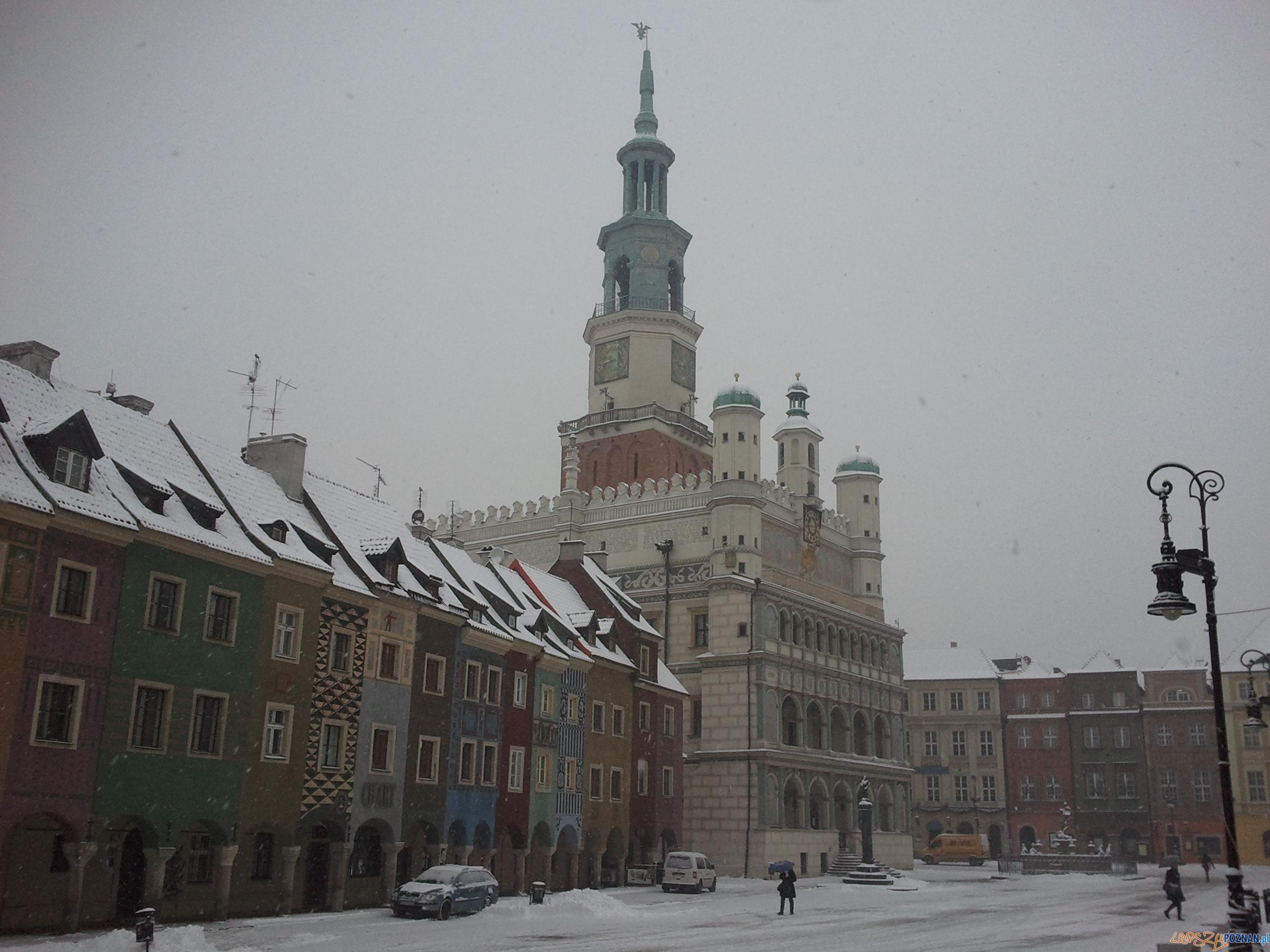 Stary Rynek o poranku  Foto: lepszyPOZNAN.pl / gsm