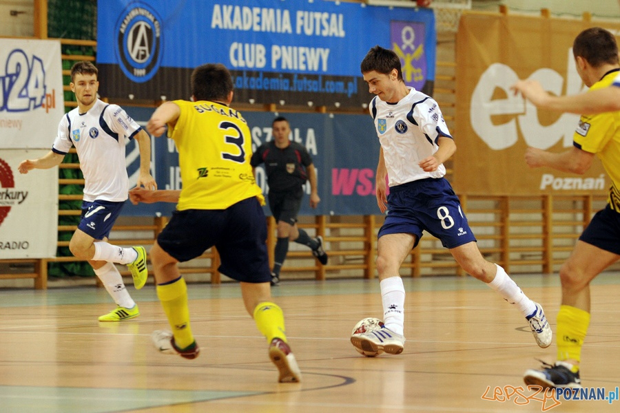 Akademia Futsal Club Pniewy  Foto: wielkopolskisport.pl / Krzysztof Kaczyński