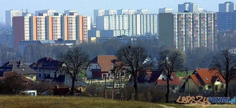 Widok z góry Moraskiej na Piątkowo  Foto: wikipedia.pl