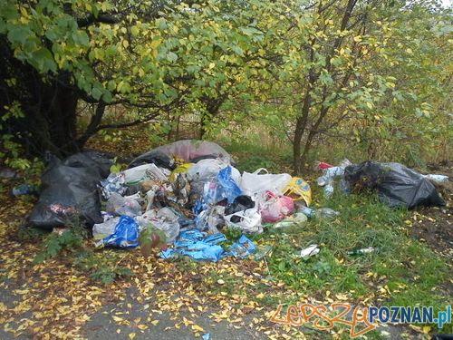 Śmieci przy Krańcowej  Foto: Straż Miejska