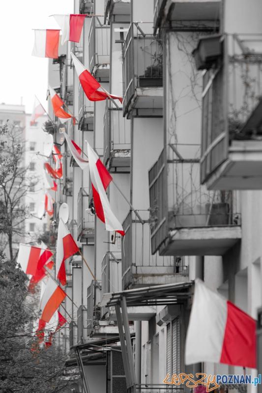 Dzien flagi - 2.05.2013 r.  Foto: lepszyPOZNAN.pl / Piotr Rychter