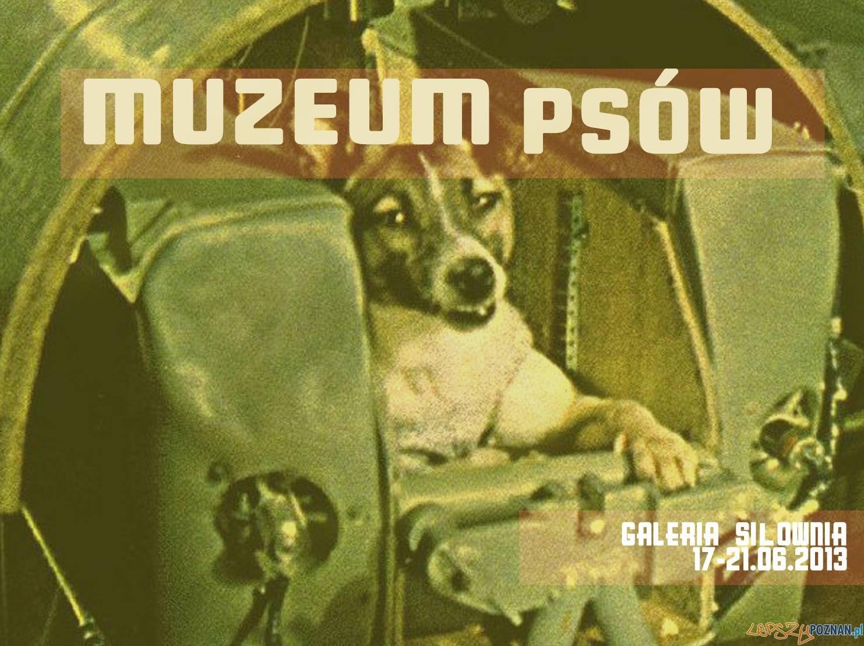 Muzeum Psów  Foto: