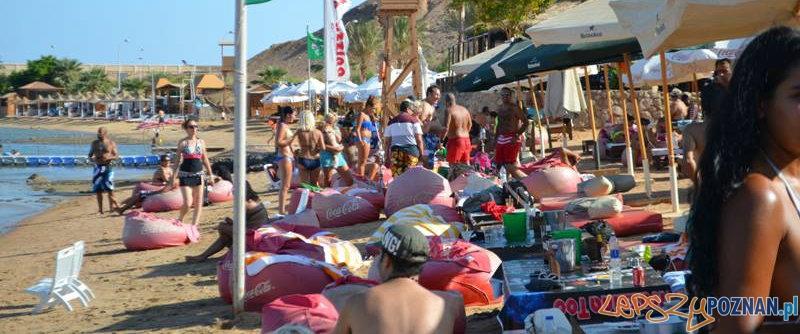 Plaża w Sharm El Sheikh - 23.08.2013  Foto: http://sharm-el-sheikh.pl/