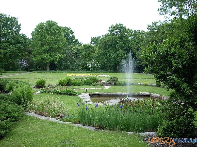Ogród Botaniczny  Foto: CC wikipedia