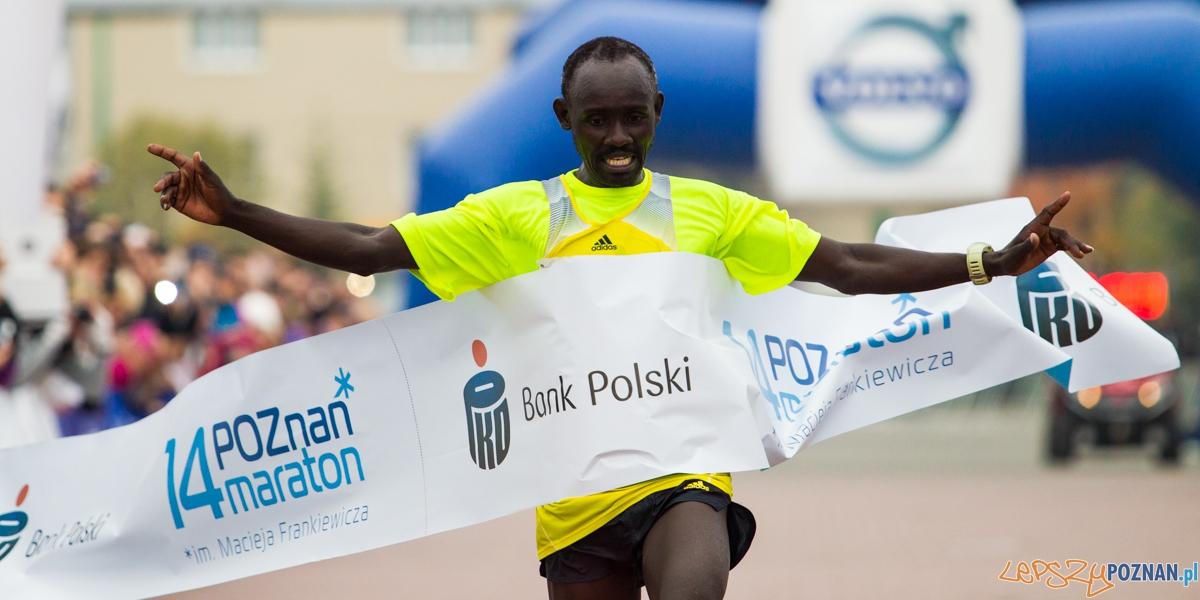 14 Maraton Poznań (1)  Foto: Marek Zakrzewski
