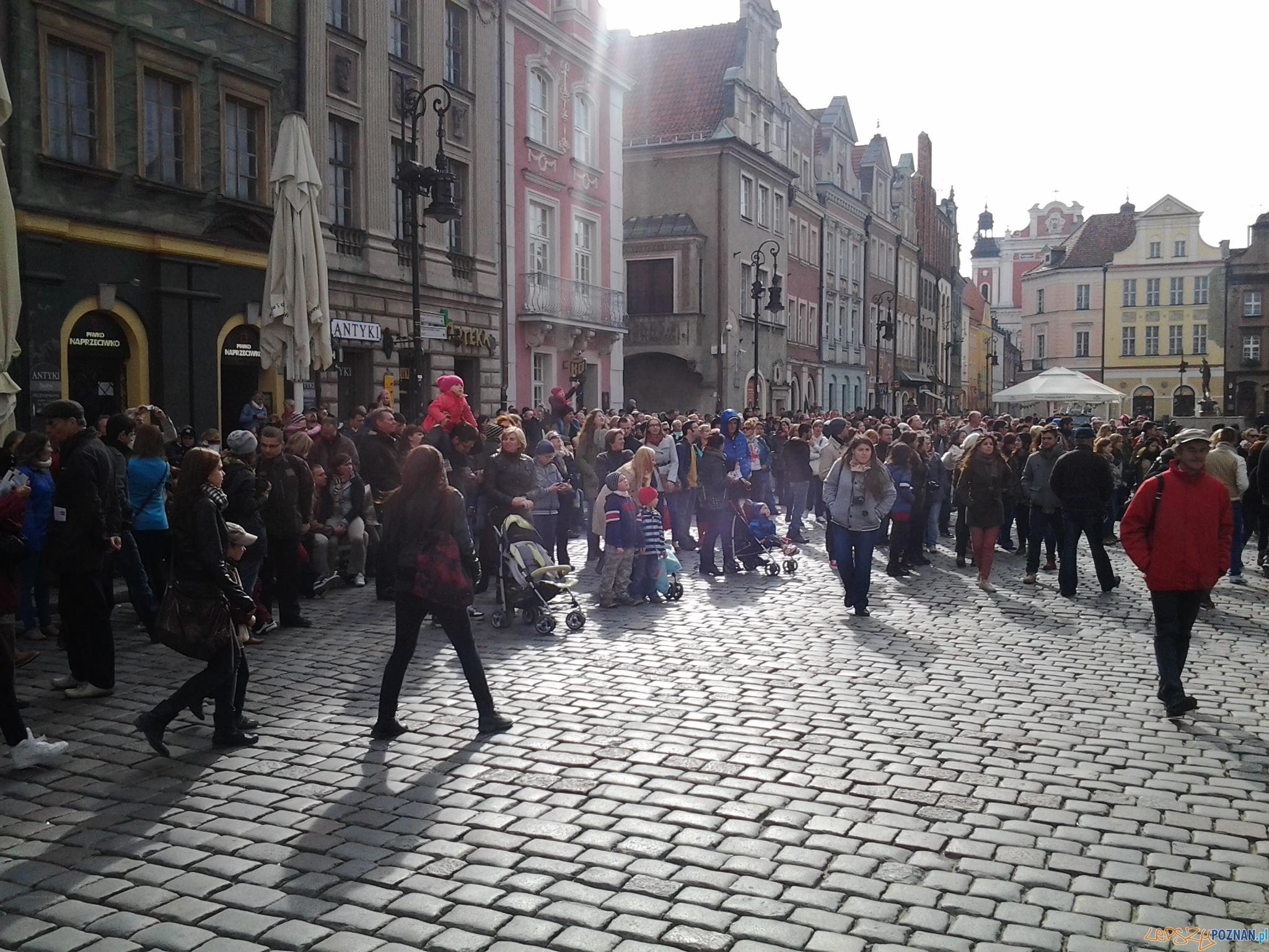 Turyści na Starym  Foto: lepszyPOZNAN.pl / tab