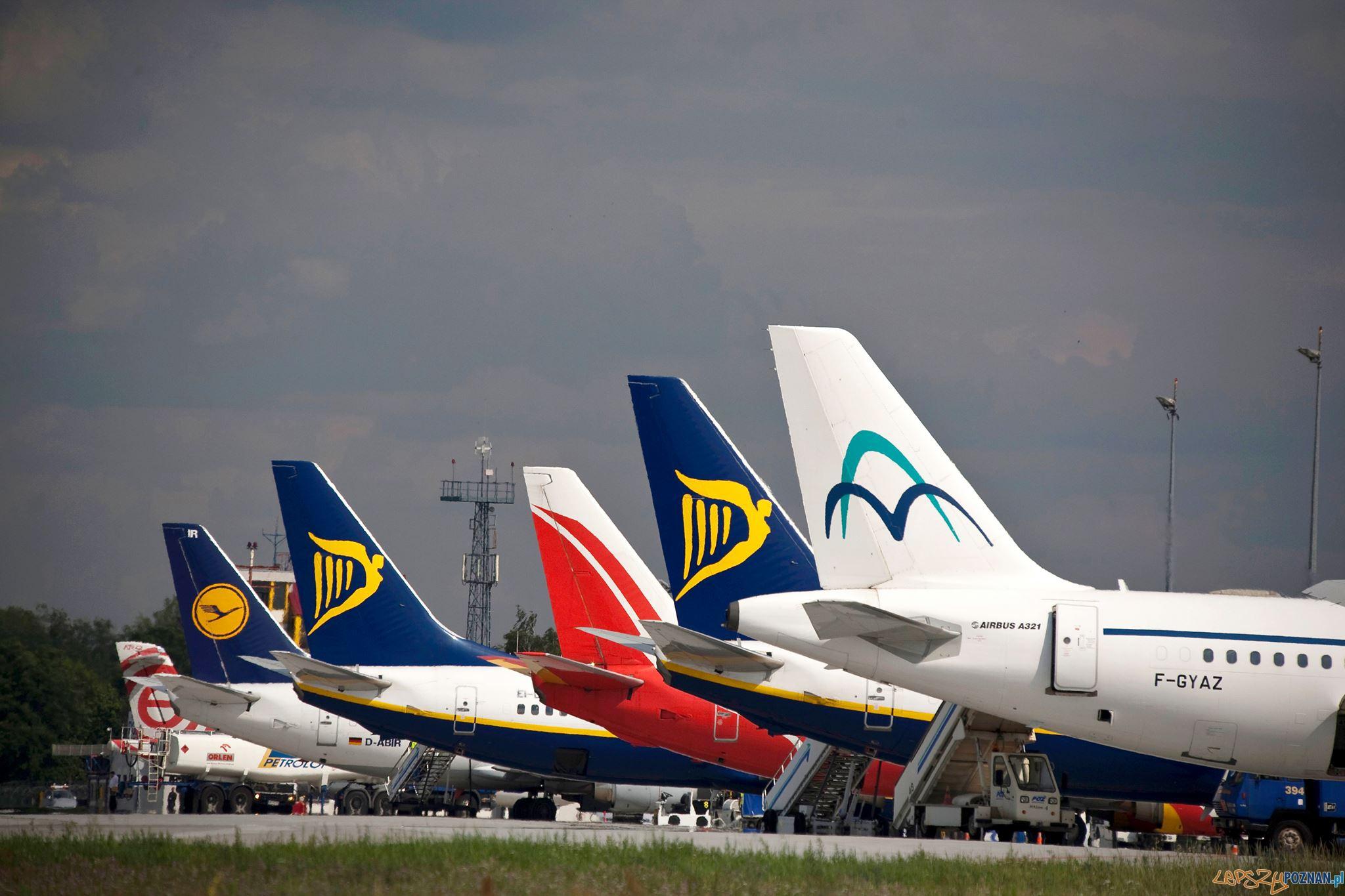 Ławica samoloty - odprawa  Foto: Port Lotniczy Ławica