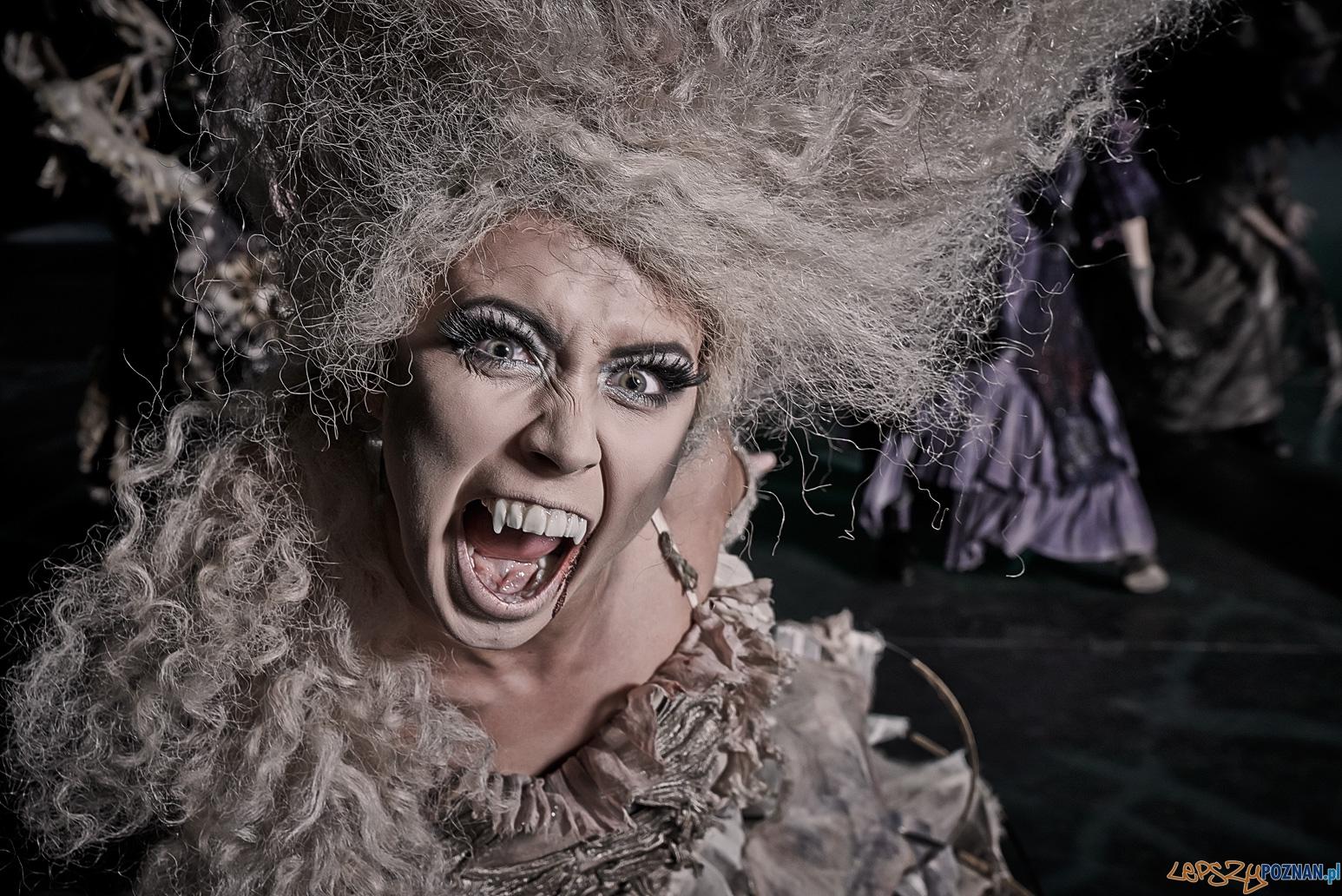 Ale Musicale  Foto: Teatr Muzyczny Roma / Paweł Perz