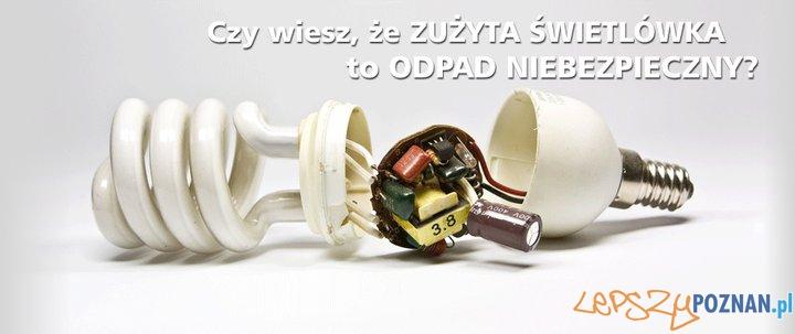 Elektrośmieci  Foto: