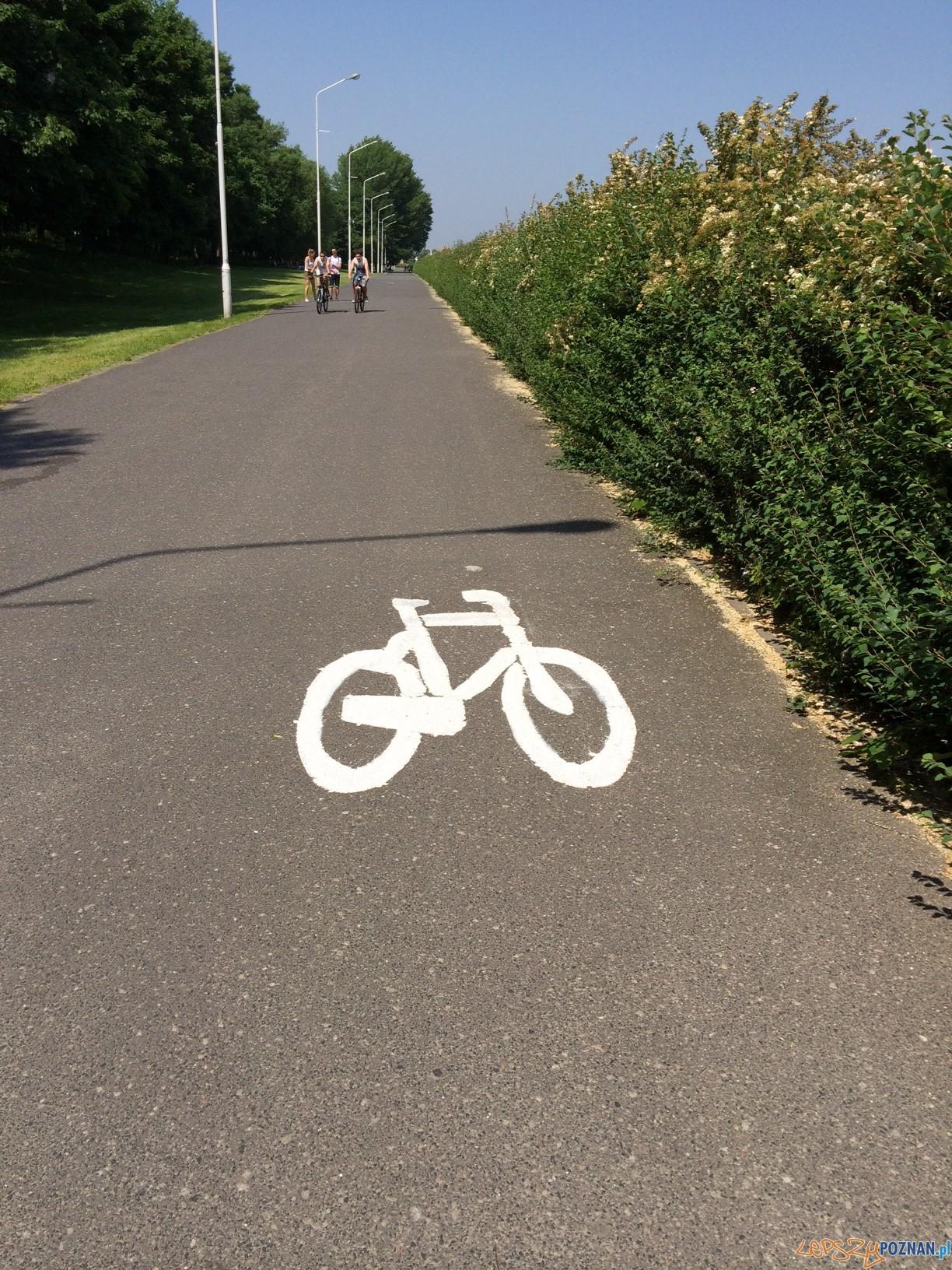 Dodatkowe oznaczenie ścierzek rowerowych  Foto: Materiały prasowe