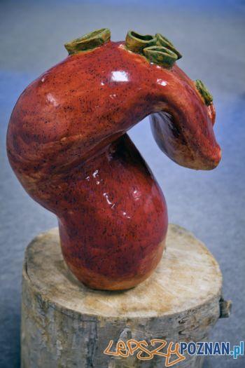 Ceramika wykonana przez studentów SWPS  Foto: SWPS