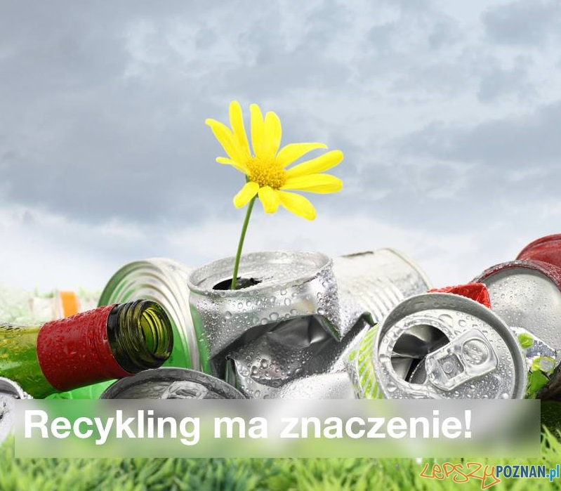 Recycling  Foto: