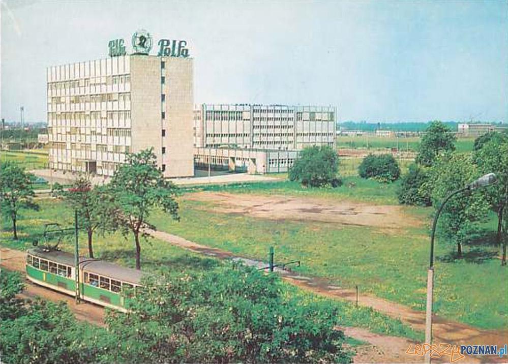 Polfa w Poznaniu, rok 1977  Foto: