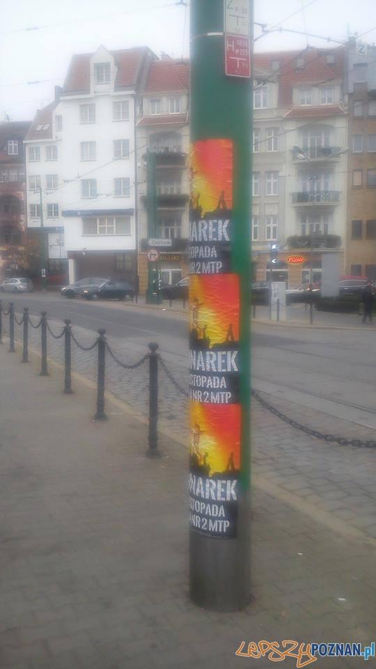 Zaklejone słupy na Wildzie  Foto: Łukasz Kozłowski