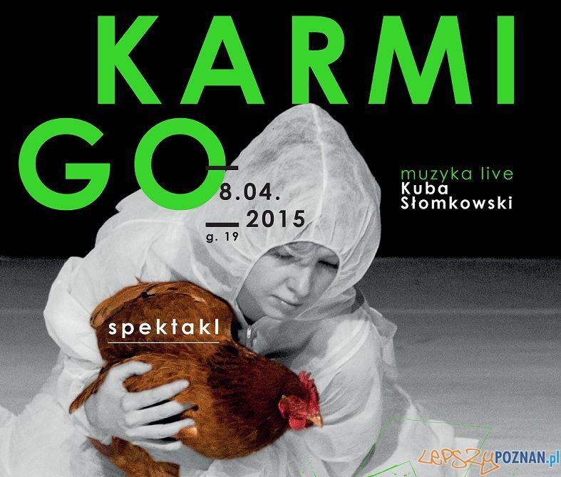 Spektakl Karmi Go   Foto: CK Zamek