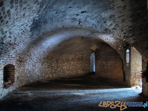Fort Va  Foto: materiały prasowe