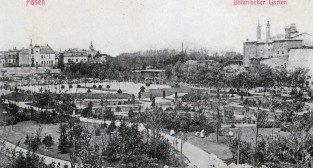 Park Wilsona 1915  Foto: Biblioteka Uniwersytecka