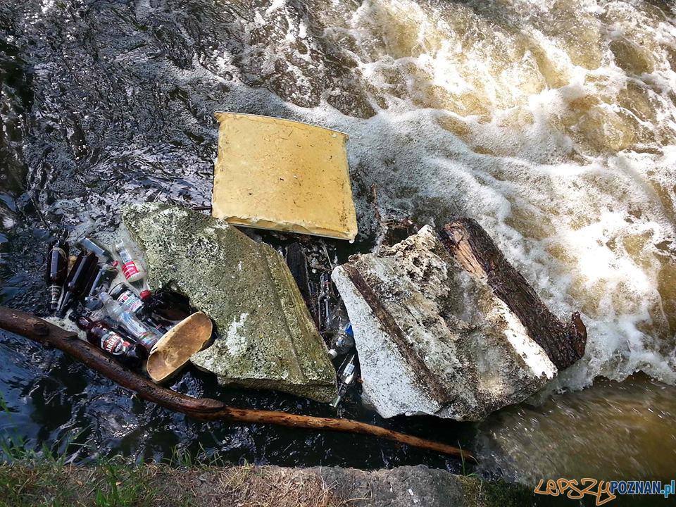 Butelki - śmieci w rzeczce Główna  Foto: