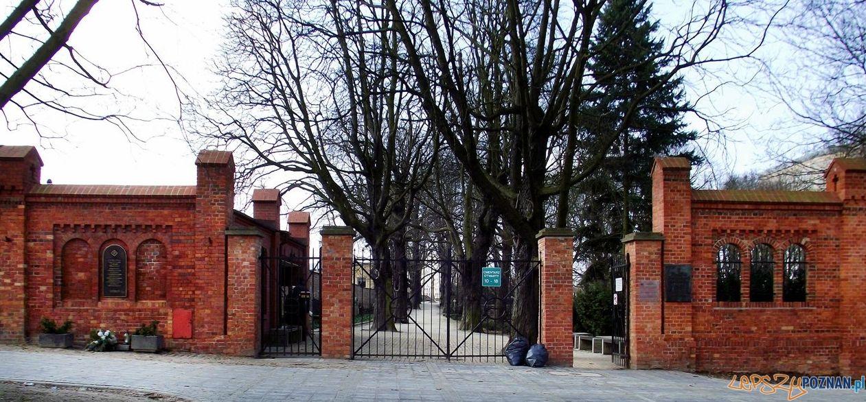 Cmentarz Zasłużonych Wielkopolan  Foto: jurekpogodno / fotopolska