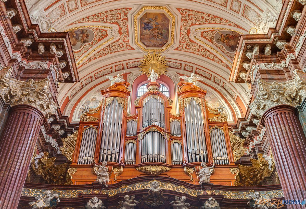 Organy Ladegasta  Foto: cc/wikipedia