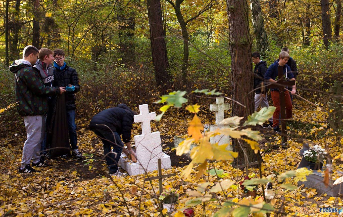 Porządki na zapomnianym cmentarzu  Foto: Gimnazjum 22 w Poznaniu