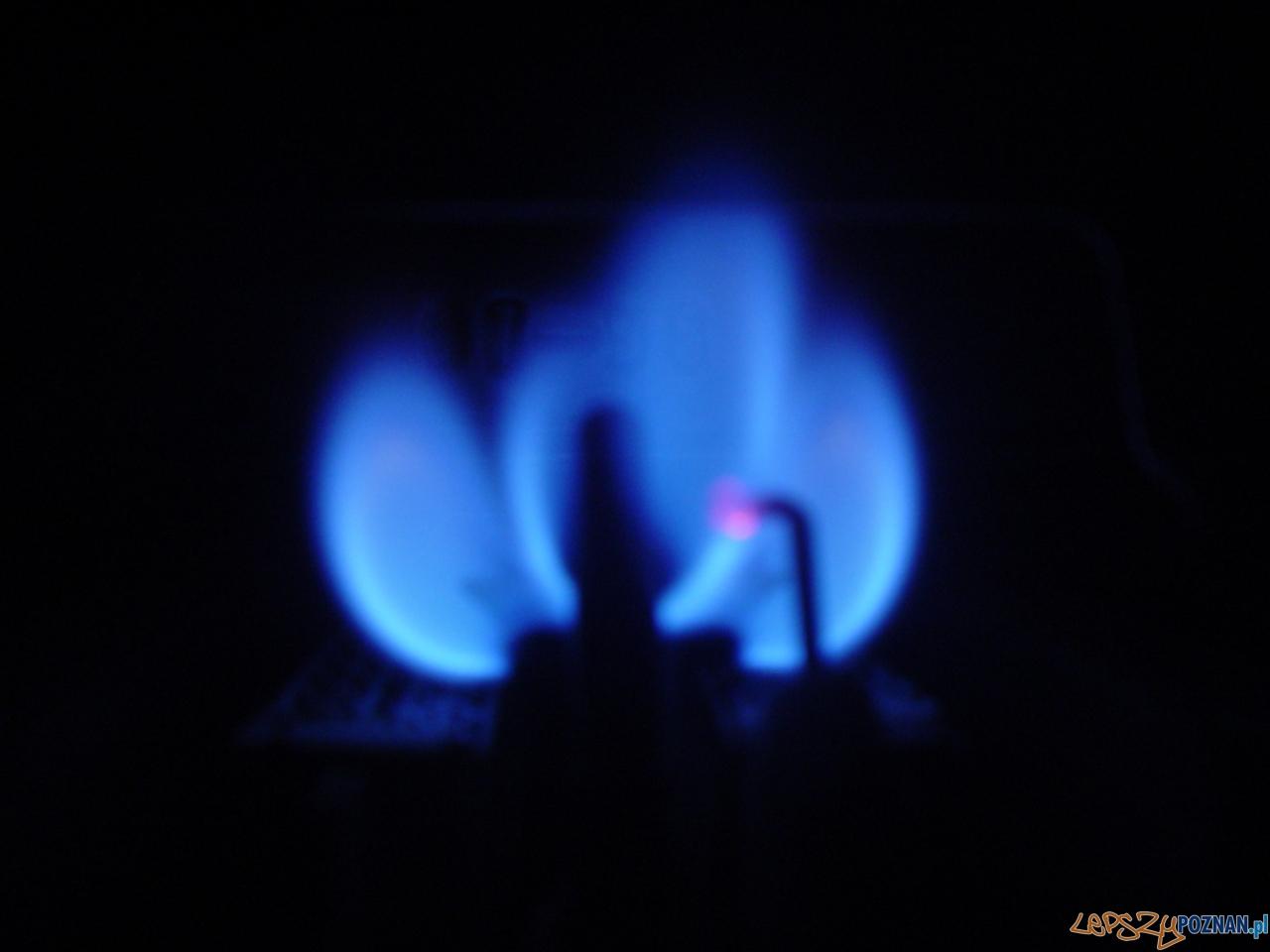 ogień gaz  Foto: sxc / GUILLERMO FOCANTI