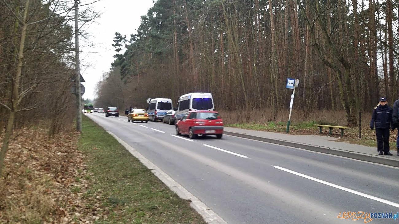 ul. Browarna, przystanek Młyn  Foto: lepszyPOZNAN.pl / tab