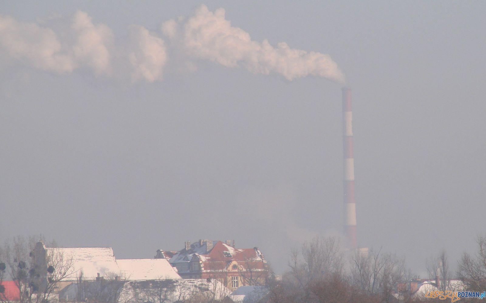 Smog w Poznaniu  Foto: