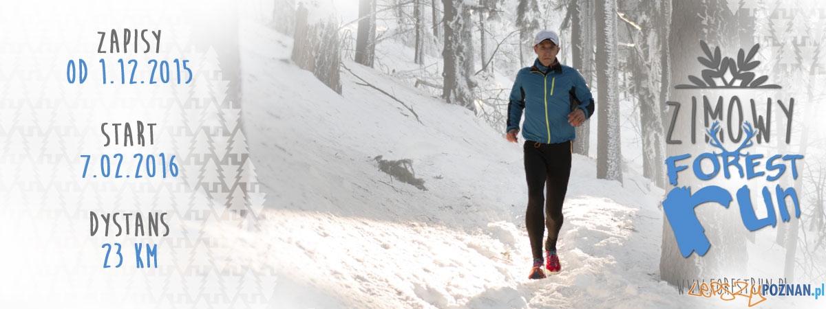 Forest Run zimą 2015  Foto: mat. organizatora