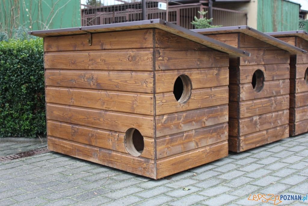 Domki dla kotów  Foto: schronisko.com