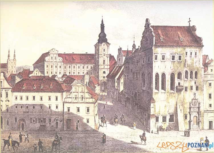 Pałac Górków  Foto: