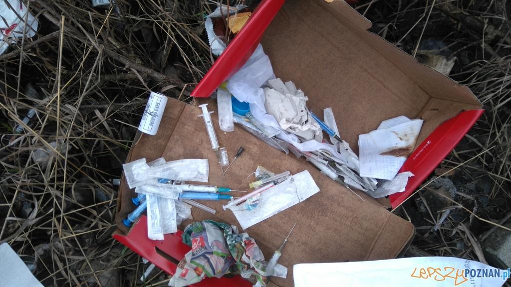 Wysypisko śmieci przy ul. Jałowcowej  Foto: Straż Miejska