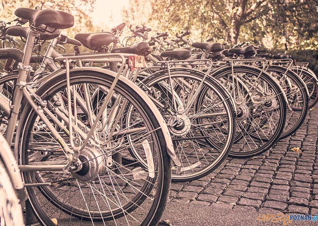 Bezplatny serwis rowerowy na Dębcu  Foto: RedPark materiały prasowe