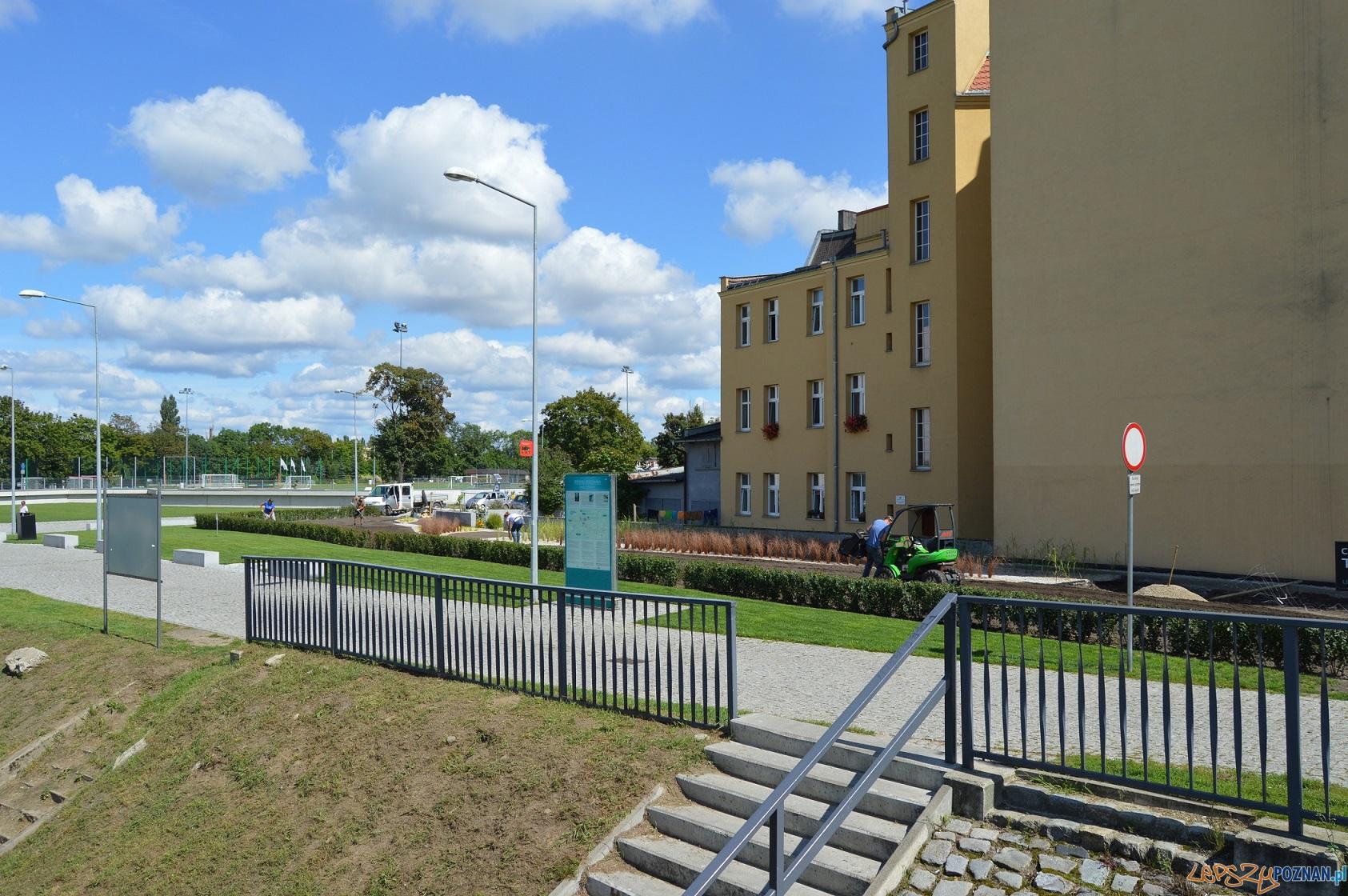 Zielono mi... na Śródce  Foto: UMP