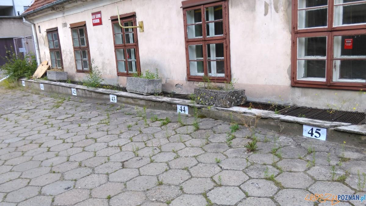 Zaklad w Starej Papierni (34) Foto: Tomasz Dworek